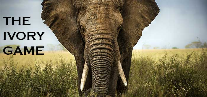 Documentales sobre medio ambiente The ivory game