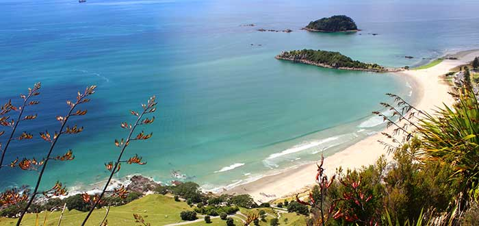 Bay-of-Plenty-playas-en-Nueva-Zelanda